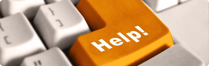 Essay Help | Essay Writer